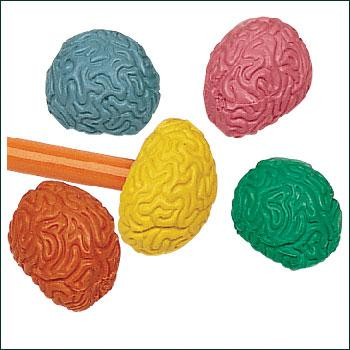 http://www.imsafe.com/sites/default/files/imagecache/product_full/products/8-4680-brain-erasers.jpg