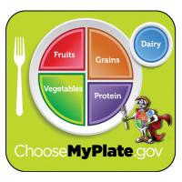 11-4006 Large Format Teaching Cards - MyPlate Nutrition