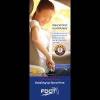 FL3-8015 Seat Belt - Click It or Ticket - Florida Info-Pledge Card