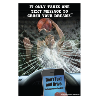3-6002 It Only Takes One Message to Crash Your Dreams Poster