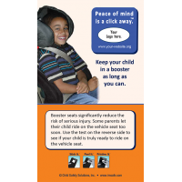 Booster Seat Screen Cleaner Reminder