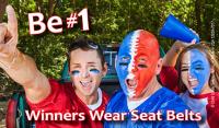 FL3-7017 Winners Wear Seat Belts - Florida Palm Card