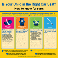 """2-3602 """"Is Your Child in the Right Car Seat?"""" Tabletop Display"""