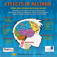 10-4892 Alcohol's Effects on the Brain - Tabletop Display - Customized Sample
