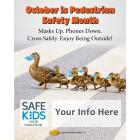 Safe Kids Pedestrian Duck Meme - Customize for Your Coalition