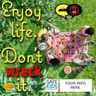 Enjoy Life - Don't 'Wreck' It Meme for Safe Kids