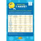 13-1012 What Do I Have Symptoms Poster