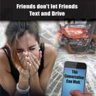 3-6038 Friends Don't Let Friends Text and Drive - Tabletop Display