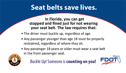 Fl3 7012 Pickup Truck Florida Seat Belt Palm Card I M Safe