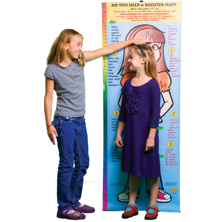 2 3891 Bilingual Life Size Height Chart Display Sofia